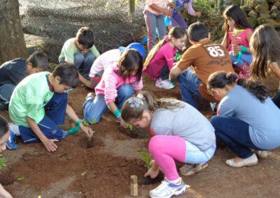 Plantio educativo realizado em Abelardo Luz