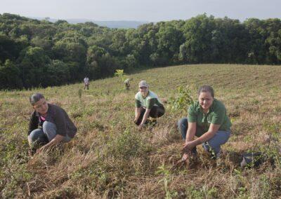 Estagiários plantando mudas nativas.