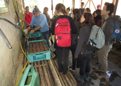 Estagiários durante primeiro tour no Viveiro da Apremavi.