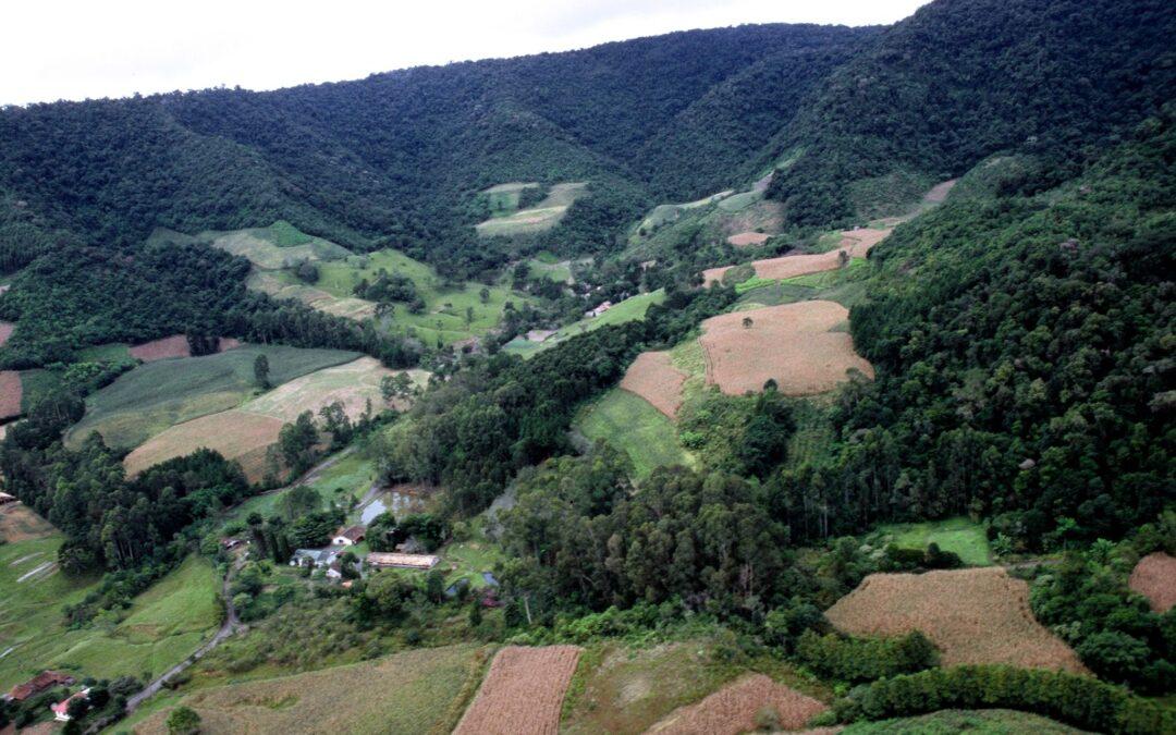 Novo Código Florestal completa 8 anos