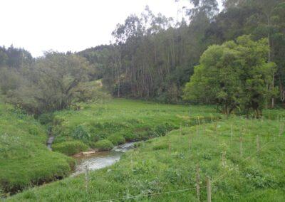Veroni Cascais