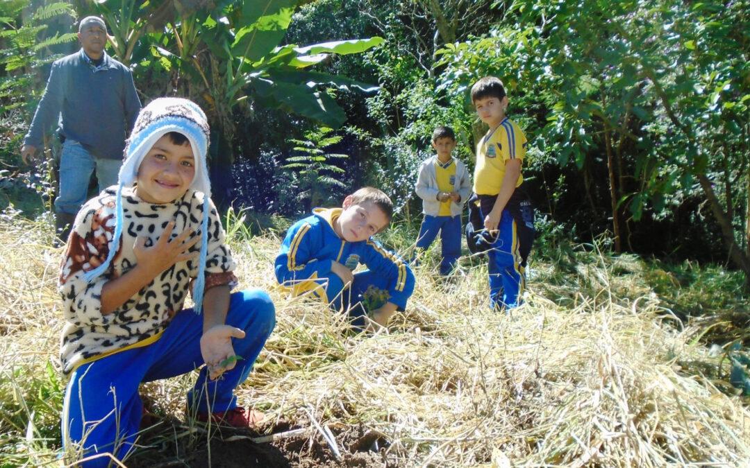 Mata Sociais é selecionado para nova publicação de Casos de Sucesso do Diálogo Florestal