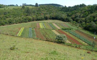 9° Seminário Estadual de Agroecologia será realizado no Alto Vale