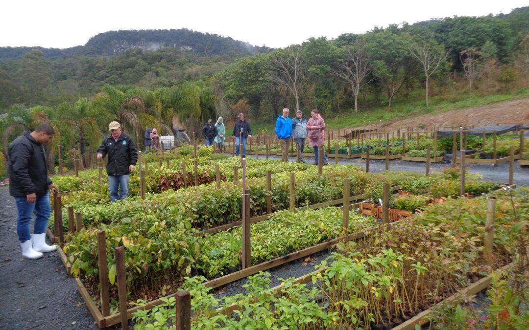 Apremavi realiza Encontro com ONGs do Paraná e de Santa Catarina