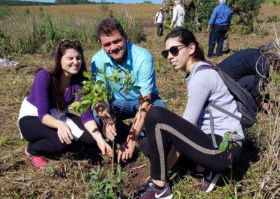 Plantio de árvores nativas. Foto: Arquivo Apremavi.