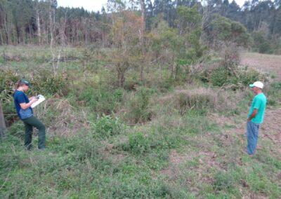 Área a ser restaurada na propriedade Joao e Iraci Ribeiro da Silva.