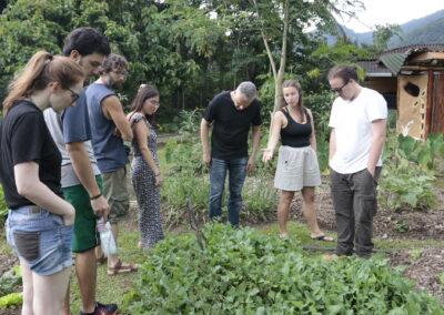 Conversa sobre PANCS - Plantas Alimentícias Não Convencionais. Foto: Gabriel Carvalho.