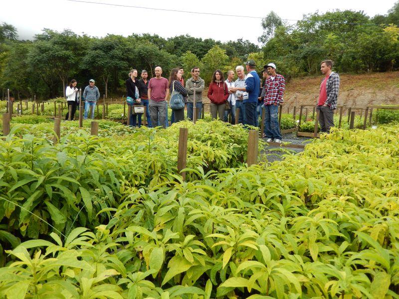 Restaura Alto Vale realiza dia de campo sobre agricultura orgânica e restauração florestal