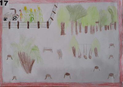 """Desenho de Ana Vitória Porto para o concurso """"O bosque da escola"""". Foto: Miriam Prochnow."""