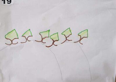 """Desenho de Jorge Henrique de Jesus para o concurso """"O bosque da escola"""". Foto: Miriam Prochnow."""