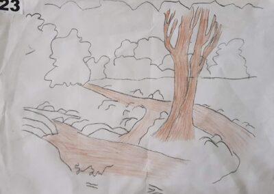 """Desenho de Gustavo Nei Mayer para o concurso """"O bosque da escola"""". Foto: Miriam Prochnow."""