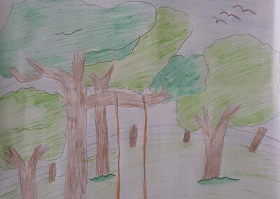 """Desenho de Cristiomar Nunes para o concurso """"O bosque da escola"""". Foto: Miriam Prochnow."""