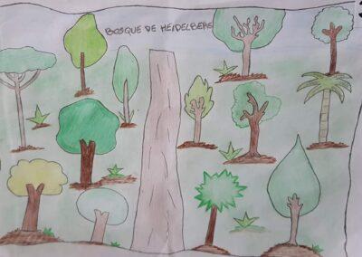 """Desenho de Ryan Faust para o concurso """"O bosque da escola"""". Foto: Miriam Prochnow."""