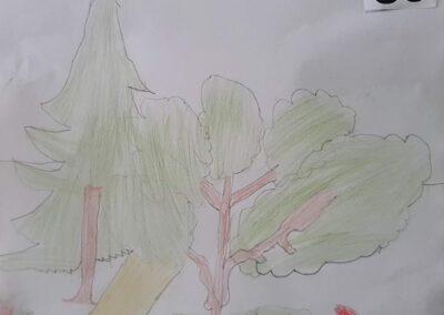"""Desenho de Rafael Koerich para o concurso """"O bosque da escola"""". Foto: Miriam Prochnow."""