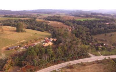 Bosques de Heidelberg completam 20 anos