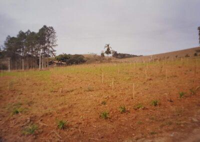 Dia do plantio (1999) do Bosques de Heidelberg em Trombudo Central (SC). Foto Arquivo Apremavi.