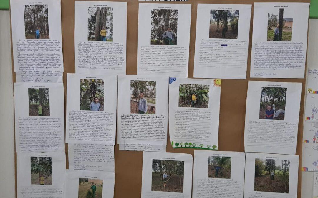 Bosque de Heidelberg: uma inspiração no dia-a-dia da Escola do Ribeirão Matilde