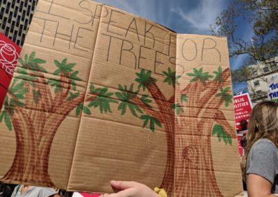 """""""Nós estamos em greve pelas árvores""""."""