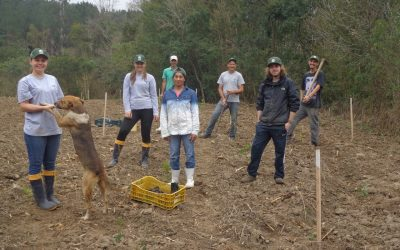 Projeto Restaura Alto Vale na RPPN Serra do Lucindo