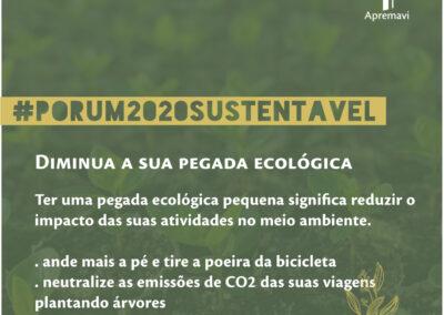Resoluções 2020 | Diminua sua pegada ecológica!