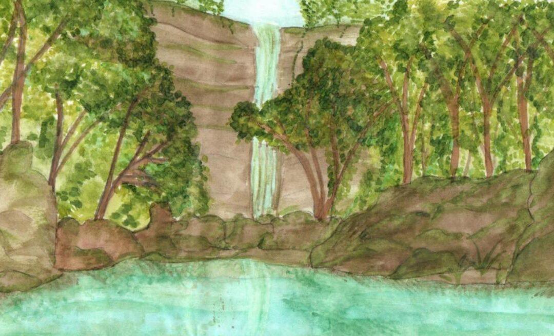 Parque Mata Atlântica terá concurso de desenhos