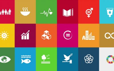 Ações da Semana ODS na Prática marcam adesão da Apremavi ao Movimento ODS SC