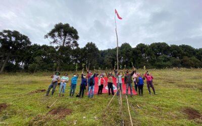 Apremavi e MST plantam 3.500 árvores no Assentamento Filhos do Contestado