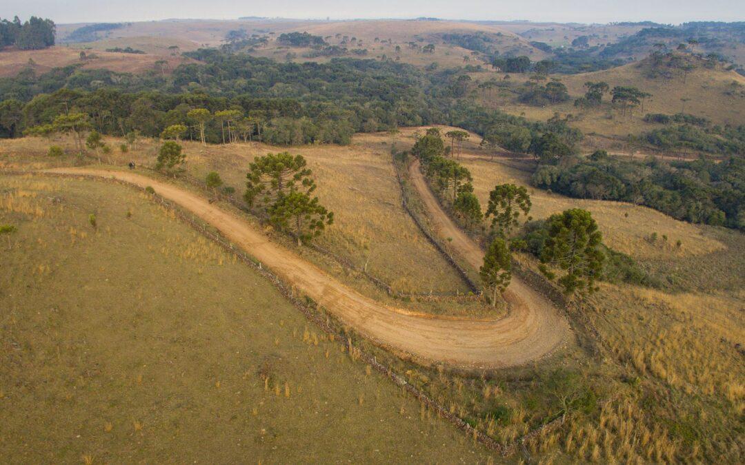 Após inverno, propriedades da Coxilha Rica plantarão nativas com apoio do Matas Legais e Sociais