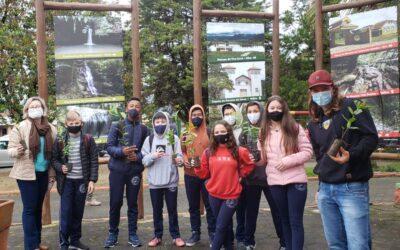 Doação de mudas nativas marca Semana do Meio Ambiente de Bom Retiro