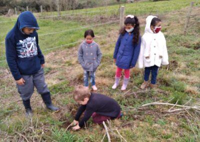 Crianças plantam árvores