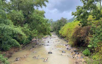 Restauração de paisagens e recursos hídricos são temas de palestra na Unidavi